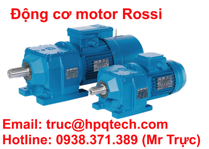 dong-co-motor-rossi